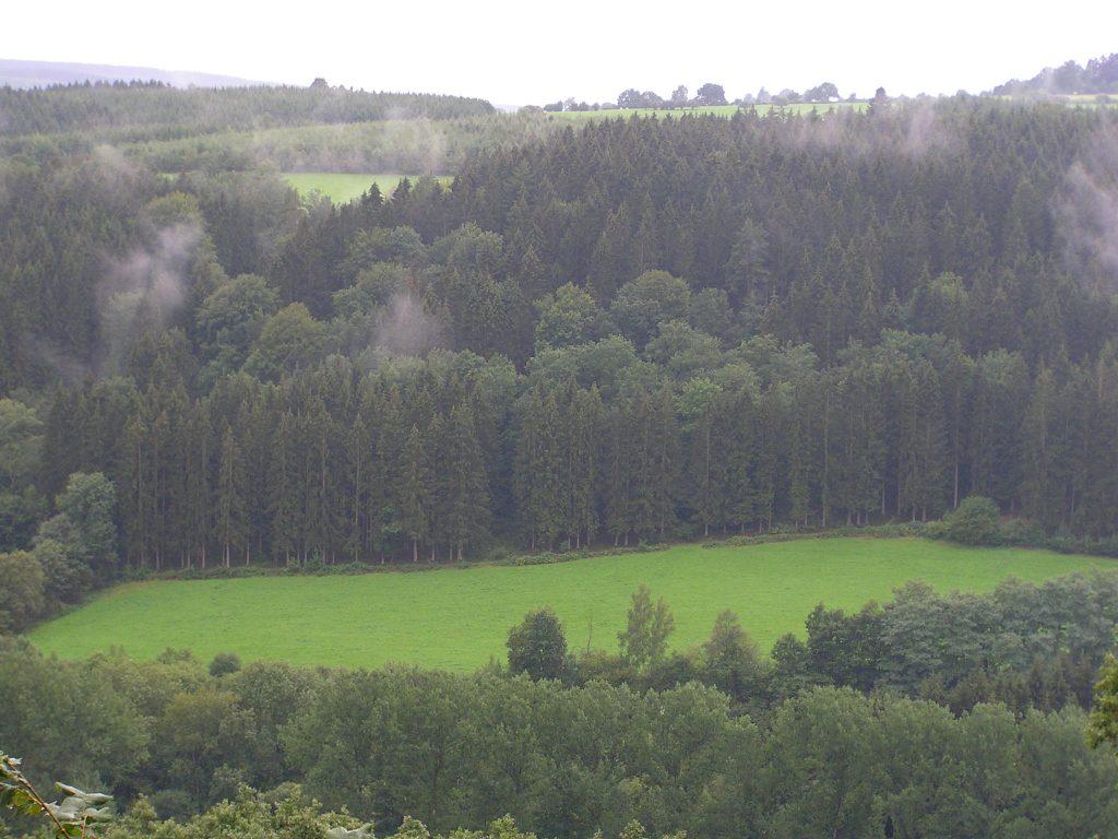 europa-2006-029-1024x768